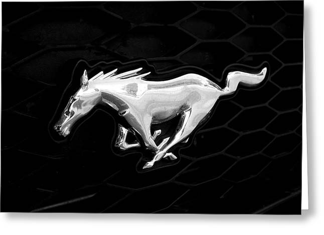 Rona Black Greeting Cards - Mustang Greeting Card by Rona Black