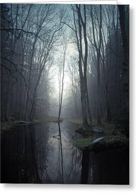 See Fog Greeting Cards - Mute II Greeting Card by Alexander Kunz