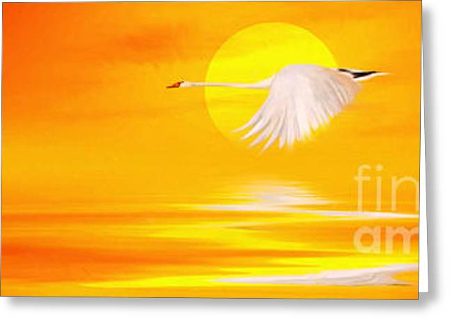 Mute Sunset Greeting Card by John Edwards