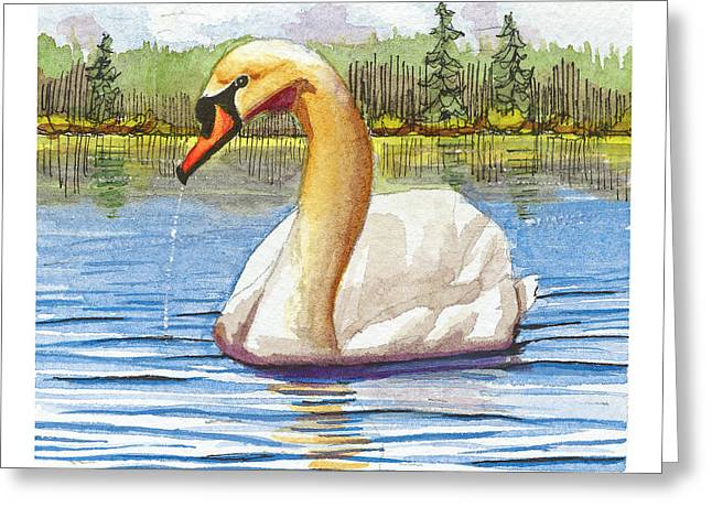 Aquatic Greeting Cards - Mute Swan Greeting Card by Dave Whited