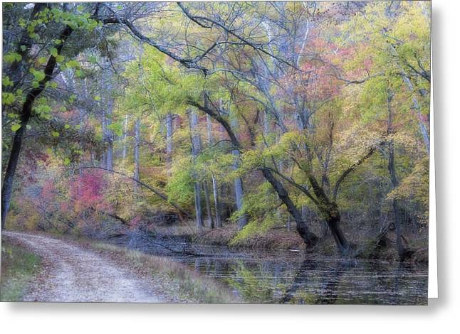 Holiday Card Greeting Cards - Muted Fall Colors on Maryland Canal Greeting Card by Francis Sullivan