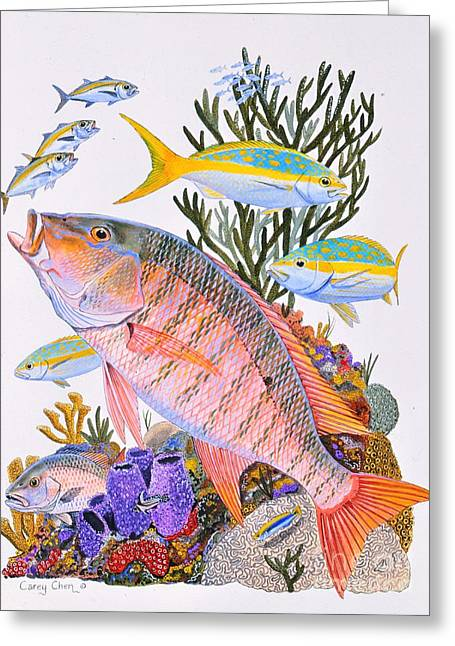 Jig Greeting Cards - Mutton Snapper reef Greeting Card by Carey Chen