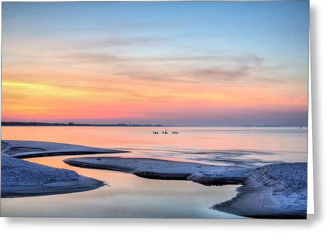 Florida Panhandle Greeting Cards - My Back Yard Greeting Card by JC Findley