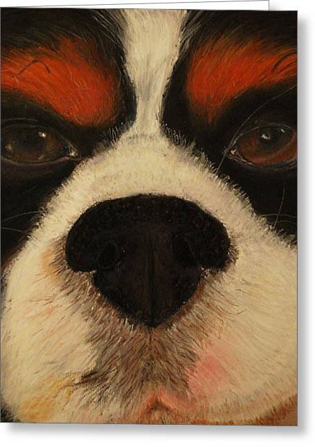 Charles Pastels Greeting Cards - My Dog Max the Cavalier King Charles Spaniel Greeting Card by Shea Libbey