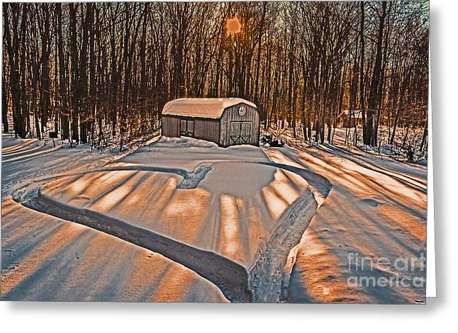 Barn Yard Greeting Cards - My Dog Trail Run 2 Greeting Card by Gary Keesler