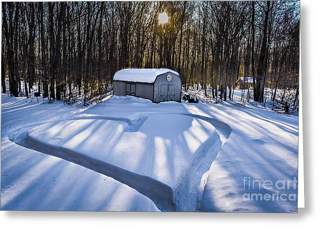 Barn Yard Greeting Cards - My Dog Trail Run Greeting Card by Gary Keesler