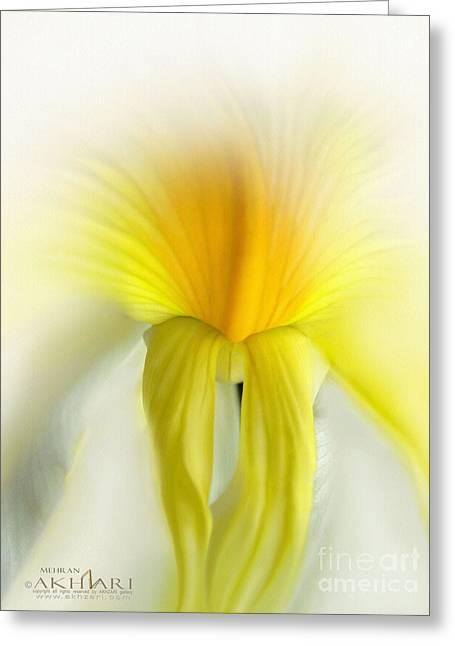 Mehran Akhzari Greeting Cards - My Dreams Dancer Greeting Card by Mehran Akhzari