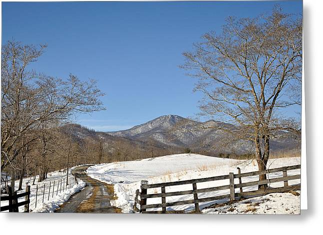 Board Fence Greeting Cards - My Driveway Greeting Card by Todd Hostetter