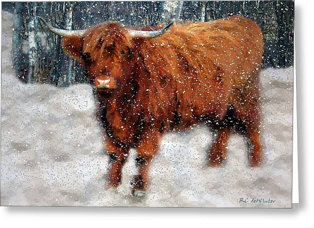 Snowstorm Greeting Cards - My Feets Are Cold Greeting Card by RC deWinter