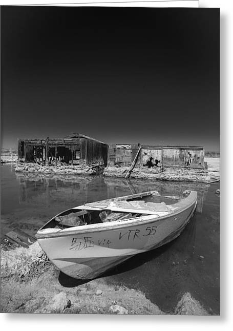 Photograph Greeting Cards - My Front Yard Black and White Greeting Card by Scott Campbell