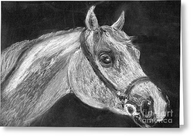 Horse Images Pastels Greeting Cards - Ghostly knight mare Greeting Card by Madeline Moore