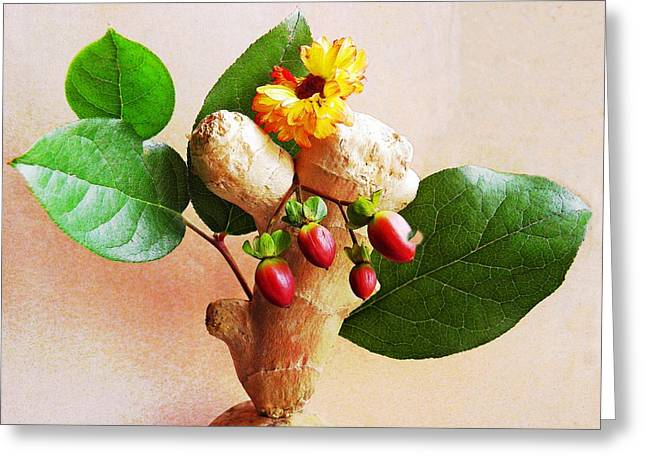 Interior Still Life Photographs Greeting Cards - My Little Ginger Tree 2 Greeting Card by Sarah Loft