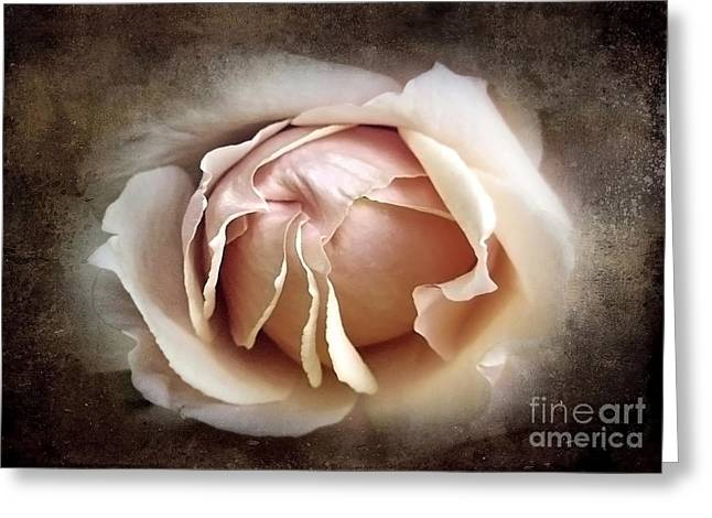 Texture Flower Greeting Cards - My Love is Unfolding Greeting Card by Ellen Cotton