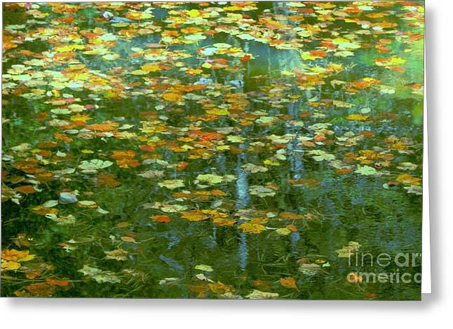 Impressionistic Landscape. Fall Greeting Cards - My Monet Greeting Card by Benanne Stiens