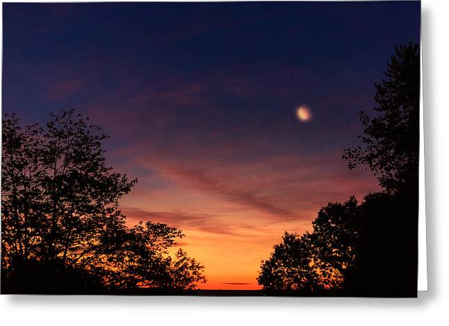 Connecticut Greeting Cards - My Morning Greeting Card by Bill  Wakeley