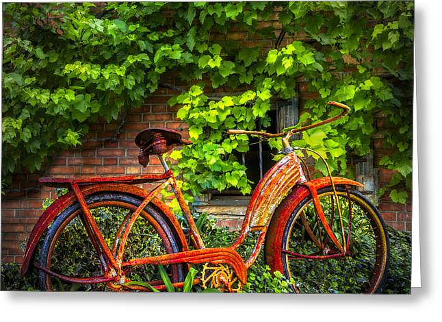 Swiss Photographs Greeting Cards - My Old Bicycle Greeting Card by Debra and Dave Vanderlaan