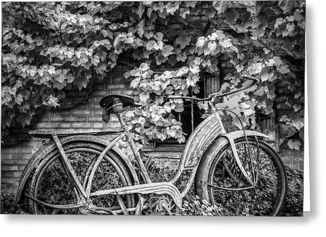 Swiss Photographs Greeting Cards - My Old Bicycle in Black and White Greeting Card by Debra and Dave Vanderlaan