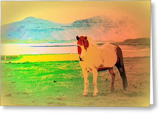 Psychiatric Greeting Cards - My old Icelandic mare Greeting Card by Hilde Widerberg