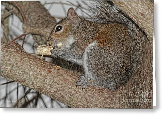 My Peanut Greeting Card by Deborah Benoit