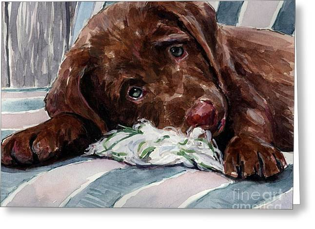 Brown Dogs Greeting Cards - My Rope Toy Greeting Card by Molly Poole