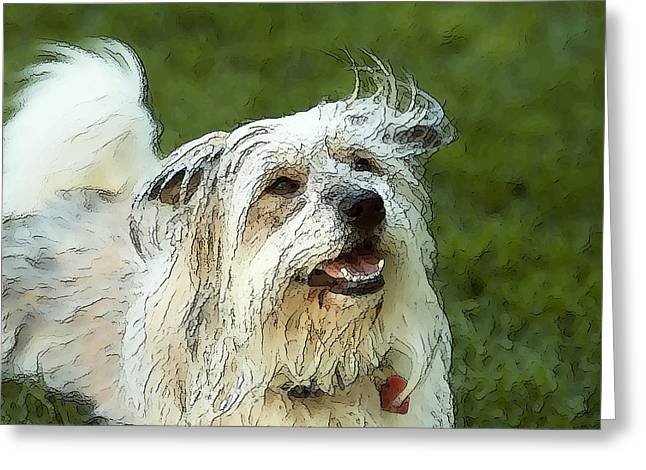 Hairy Pig Greeting Cards - My Schnitzel Greeting Card by Artist and Photographer Laura Wrede
