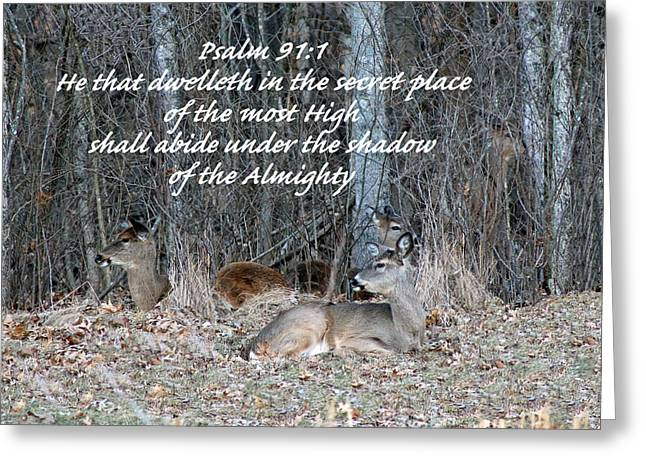 Inspirational Wildlife Prints Greeting Cards - My Secret Place Greeting Card by Lorna Rogers Photography