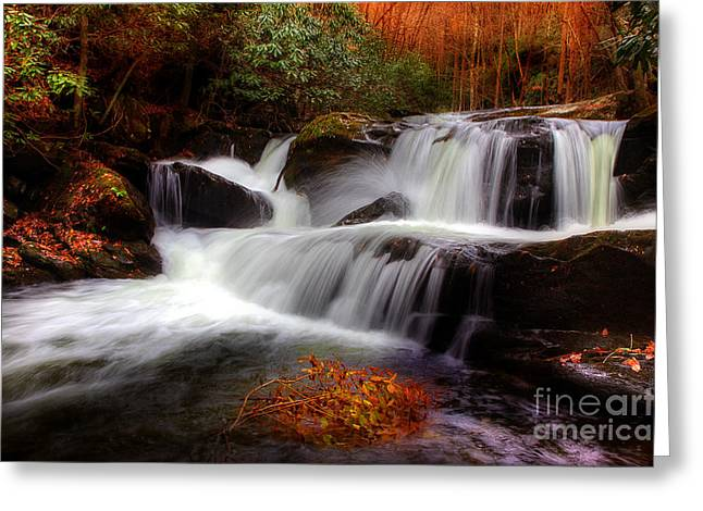 Flowing Stream Greeting Cards - My Secret Place Greeting Card by Michael Eingle