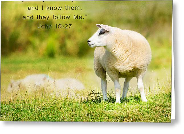 Texting Greeting Cards - My Sheep Know Me Greeting Card by MaryJane Armstrong