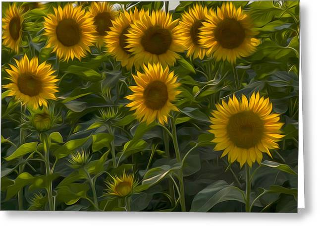 Farms Greeting Cards - My Sunshine Greeting Card by Bill  Wakeley