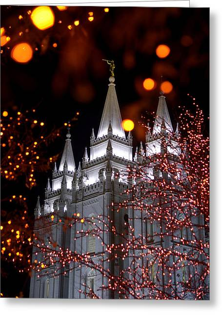Salt Lake City - Utah Greeting Cards - My Take Greeting Card by Chad Dutson