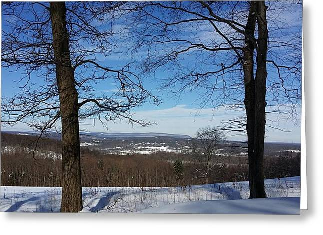 Senic View Greeting Cards - My view Greeting Card by Bradford j Cole
