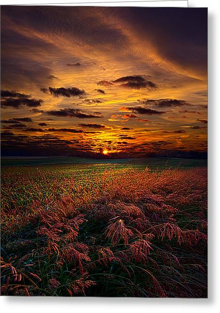 Shadows Greeting Cards - My Wish For You Greeting Card by Phil Koch