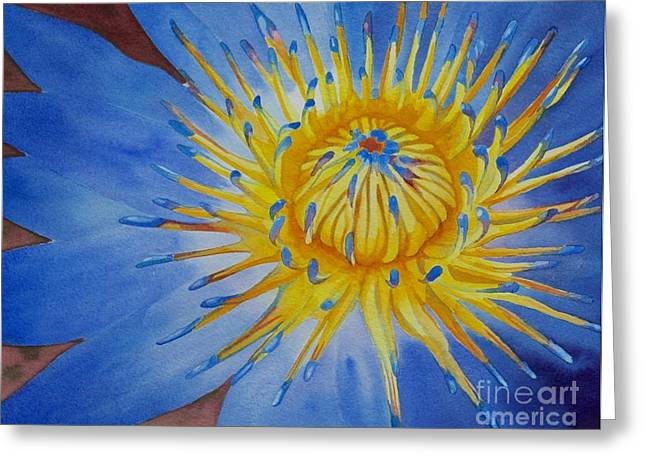 Sunburst Floral Still Life Greeting Cards - Myanamar Lily Greeting Card by Amanda Schuster