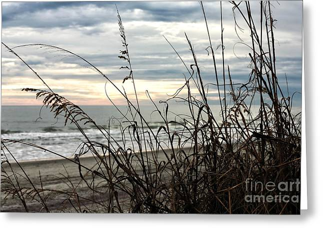 Myrtle Beach Ocean Photography Greeting Cards - Myrtle Beach Night Greeting Card by John Rizzuto