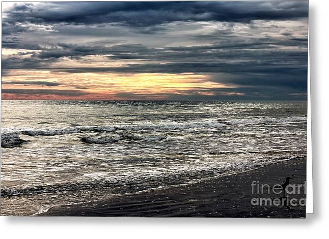 Myrtle Beach Ocean Photography Greeting Cards - Myrtle Sunset Greeting Card by John Rizzuto