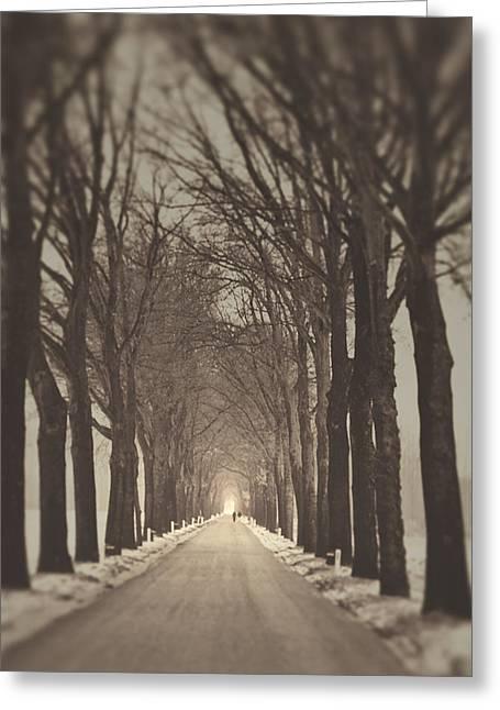Light And Dark Greeting Cards - Myst Greeting Card by Danny Van den Groenendael