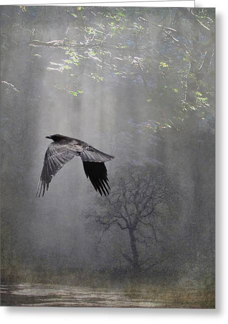 Intrigue Greeting Cards - Mysterious Greeting Card by Angie Vogel