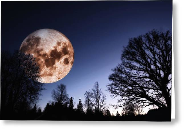 Moon Surface Greeting Cards - Mysterious Full Moon Rising Over Forest Greeting Card by Christian Lagereek
