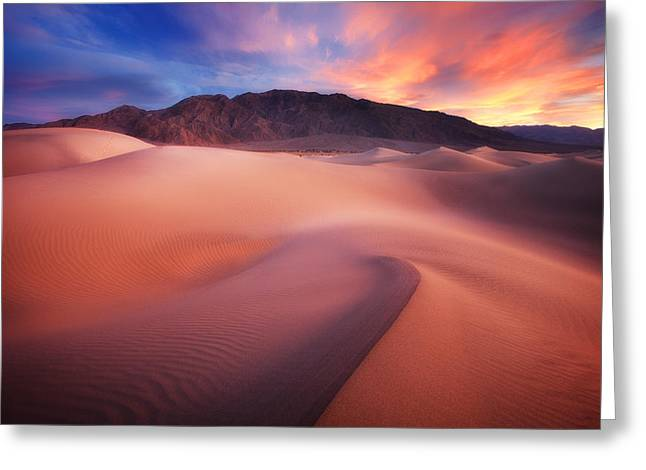Sunset Prints Photographs Greeting Cards - Mysterious Mesquite Greeting Card by Darren  White