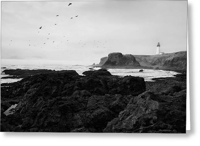 Headlands Greeting Cards - Mysterious Yaquina Head Greeting Card by Mark Kiver