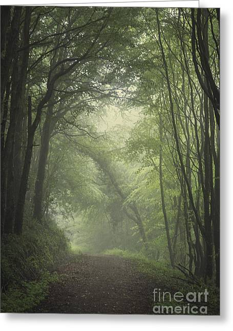 Mystic Photographs Greeting Cards - Mystery Awakens Greeting Card by Evelina Kremsdorf