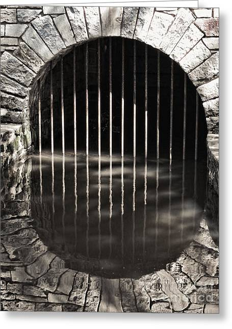 Underground Greeting Cards - Mystery Gate Greeting Card by Olivier Le Queinec
