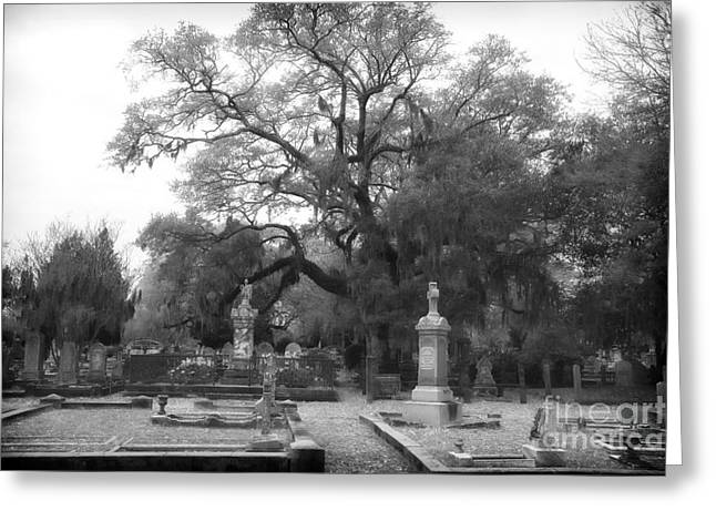 Historic Cemetery Greeting Cards - Mystery in Magnolia Greeting Card by John Rizzuto