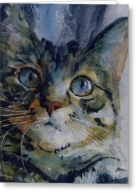Tabby Greeting Cards - Mystery Tabby Greeting Card by Paul Lovering