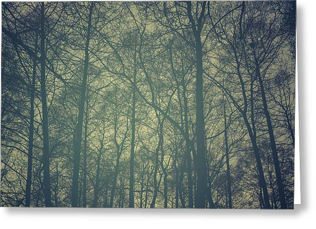 Autumn Scenes Greeting Cards - Mystic forest Greeting Card by Stylianos Kleanthous