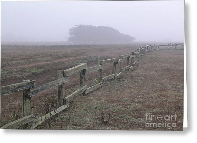 Half Moon Bay Greeting Cards - Mystic Morning Fog Greeting Card by Bill Wagner