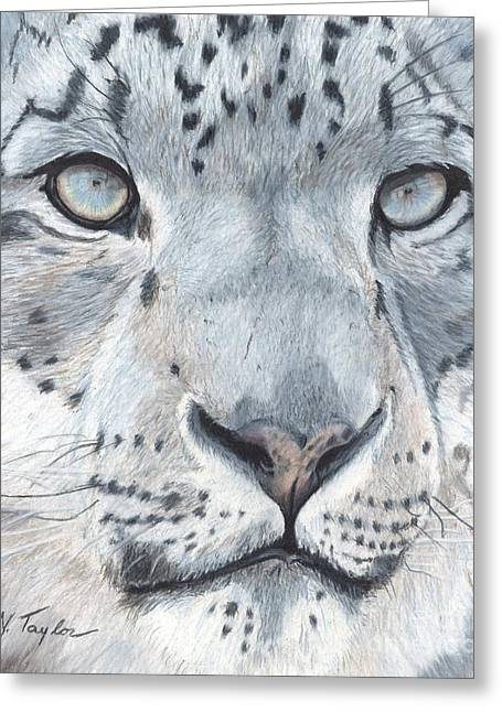 Leopard Drawings Greeting Cards - Mystic Greeting Card by Nichole Taylor