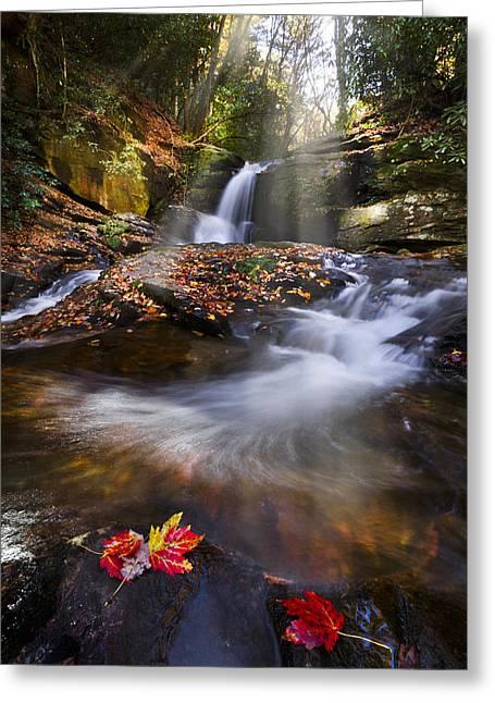 Mystical Pool Greeting Card by Debra and Dave Vanderlaan