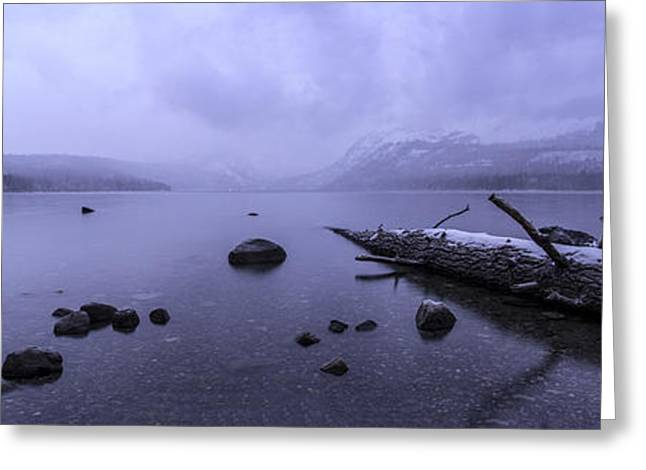 Winter Storm Greeting Cards - Mystical Storm Greeting Card by Brad Scott