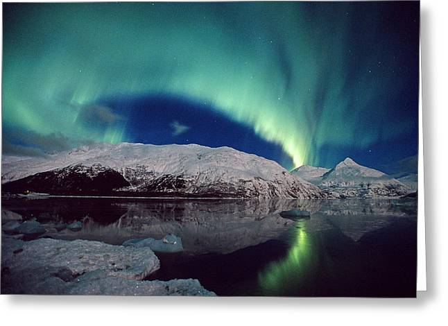 Portage Greeting Cards - N. Lights Over Portage Lake & Chugach Greeting Card by Daryl Pederson